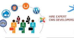 Hire Our Best CMS Experts