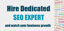 Hire a Dedicated SEO Expert in Pakistan