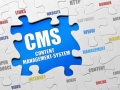 ou can hire a CMS Expert to work Great for Your Business!